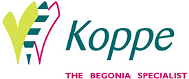 Koppe-the-begonia-specialist