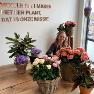Annemieke Veldhuizen website